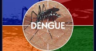 Três mortes por suspeita de dengue são investigadas em Minas