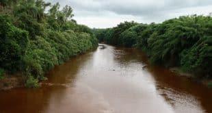 Danos no rio Paraopeba são irreversíveis, mas graças a ele o rio São Francisco pode ser poupado
