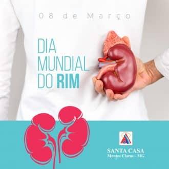 Montes Claros - A cidade de Montes Claros recebe I Workshop de Prevenção da Doença Renal Crônica