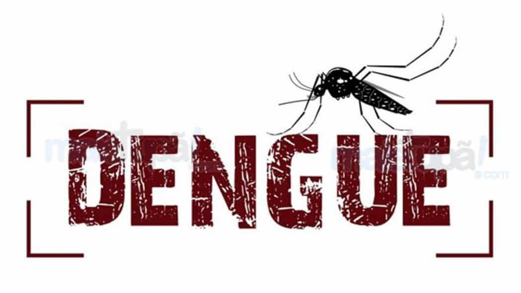 MG - Minas Gerais registra a segunda maior epidemia de dengue da história