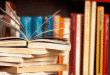 Montes Claros - Escola Municipal Mariana Santos ganha sala de leitura com 1975 livros