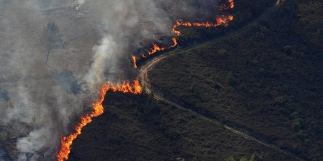 Europa - Portugal tenta conter mega incêndio em Castelo Branco