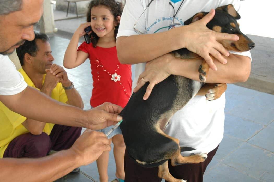 Montes Claros - Campanha de Vacinação Antirrábica será realizada no próximo sábado em Montes Claros