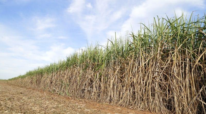 MG - Gasolina declina e consumo de etanol cresce 70% em Minas Gerais