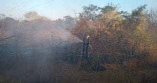 MG - Estado de Minas Gerais tem mais de uma vintena de pontos de combate a incêndios nesta segunda-feira