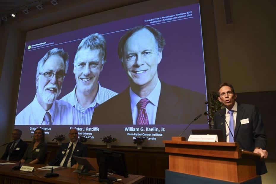 Nobel de Medicina vai para pesquisas sobre como células percebem oxigênio