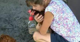 Mulher entra na justiça para ficar com galinhas prescritas por médico como remédio para transtorno