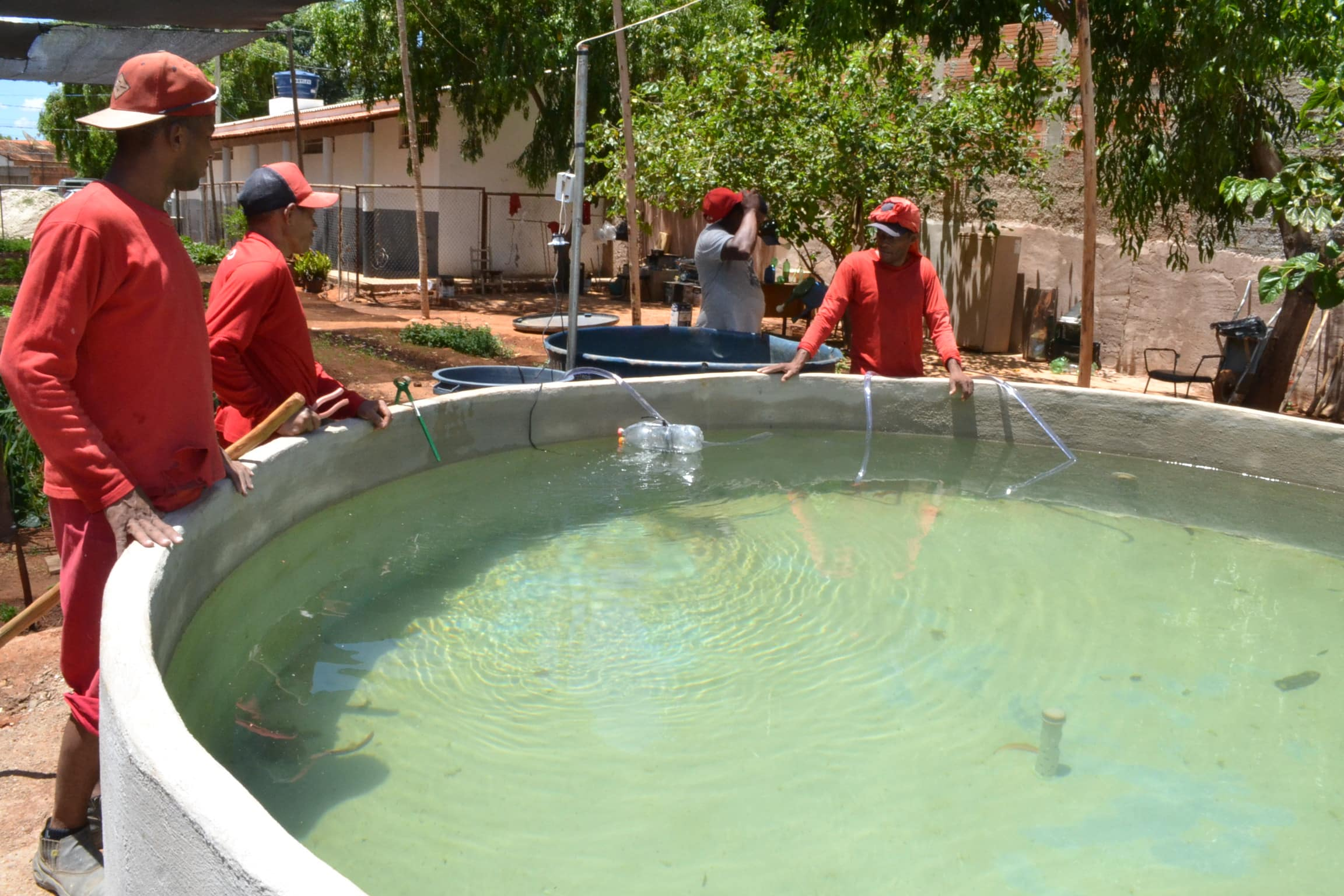 Norte de Minas - Criação de tilápias no Presídio de Janaúba gera qualificação profissional