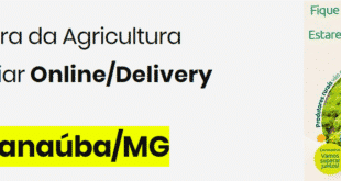 Norte de Minas - Professor desenvolve site para auxiliar pequenos agricultores de Janaúba a venderem seus produtos pela internet