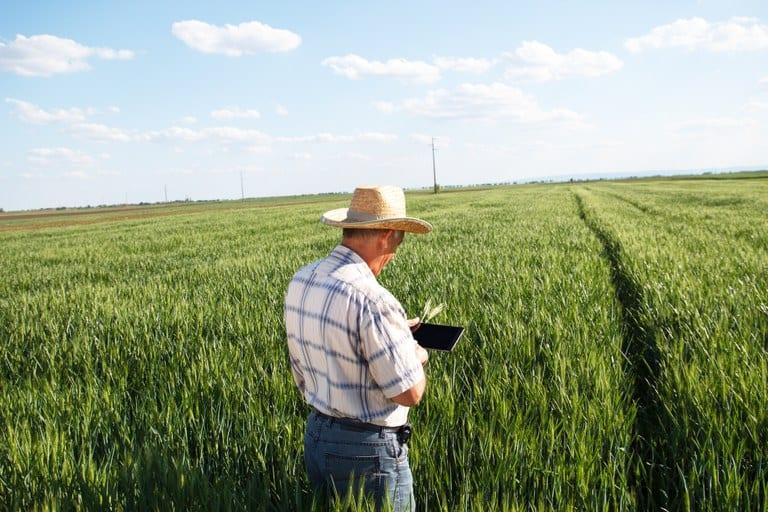 Dia do Produtor Rural Mineiro marca a importância da agropecuária no estado
